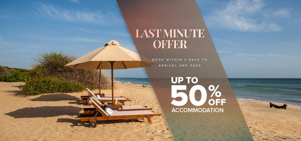 50% Off Last Minute Offer at Jungle Beach by Uga Escapes